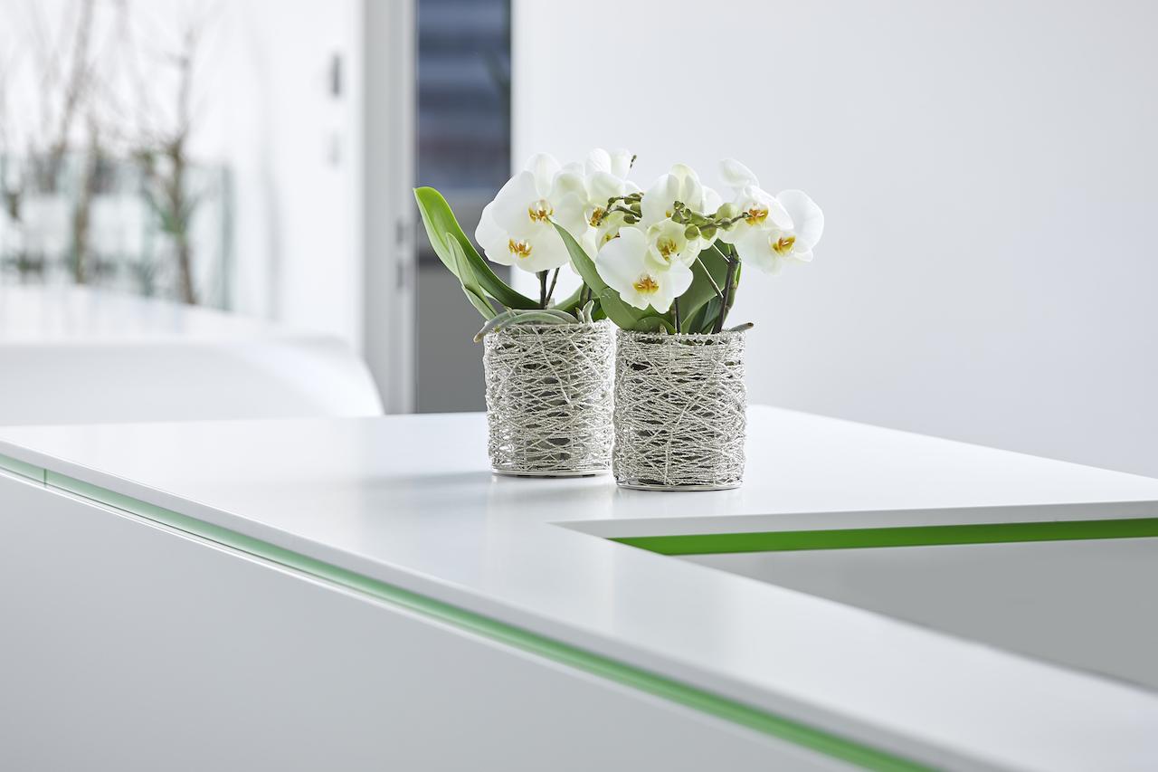 Blumen Waitz Rechtsanwälte • Rechtsanwalt Linz - Ihre Alternative im Wirtschafts- und Steuerrecht.